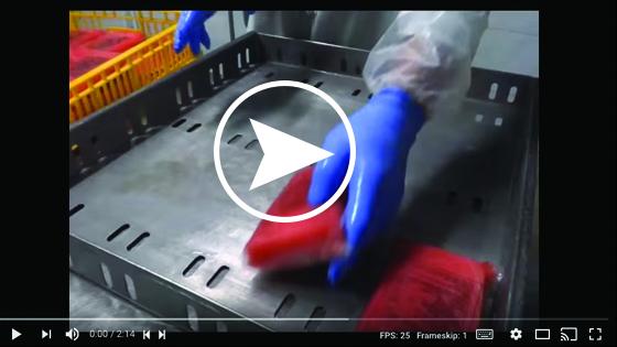 brine-video